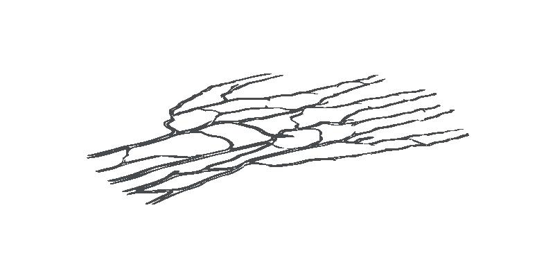 ZKTeco распознавание ладони 3-в-1